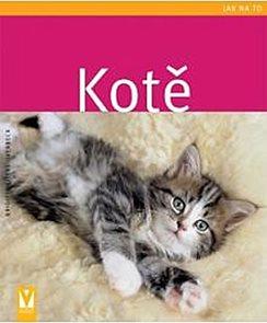 Kotě - Jak na to