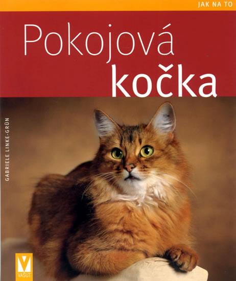 Pokojová kočka - Jak na to - Linke-Grün Gabriele - 16,5x20