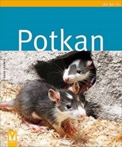 Potkan - Jak na to