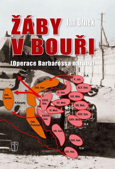 Žáby v bouři - Operace Barbarossa naruby - Drnek Jan - 17,2x23,9