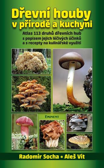 Dřevní houby v přírodě a kuchyni - Socha Radomír, Vít Aleš - 14x22